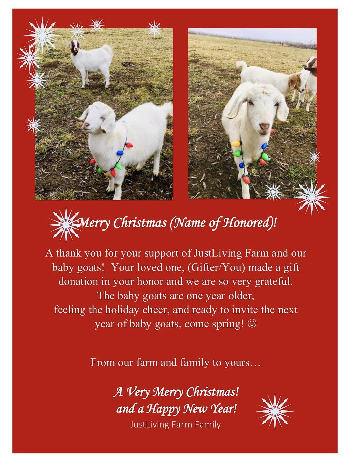 Sample Christmas Thank You Card